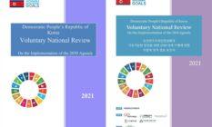 북한 '자발적 국가검토 보고서(VNR)' 번역작업에 참여했습니다